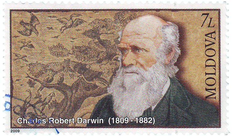 تشارلز داروين في كتابه (أصل الأنواع)، الذي تم نشره في عام 1859، وغير من خلاله الطريقة التي ننظر بها إلى العالم. Shutterstock.